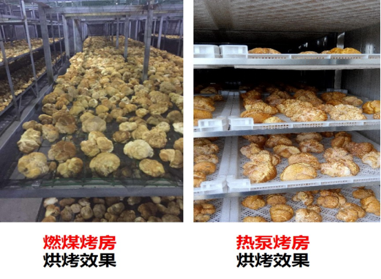 5-bbim娱le下载公司荣获di二届中guo林业产业创新jiang1846